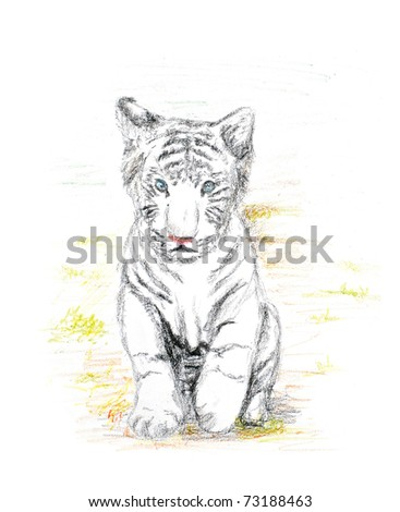baby white tiger crayon painting