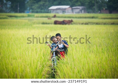 BAC GIANG,VIETNAM-JULY 10: Rural children are playing in the rice fields. JULY 10,2014 in BAC GIANG, VIETNAM