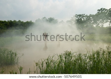 Bac Ninh, Vietnam - May 29, 2016: Children catching fish by fishing bamboo trap - the old traditional way, on pond in Bac Ninh province, with smoke from rice straw burning.