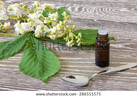 Bach flower remedies with blossoms of white chestnut on wooden background