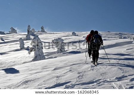 Back country skier (ski touring) - stock photo