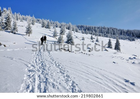 Back country skier (ski touring)  - stock photo