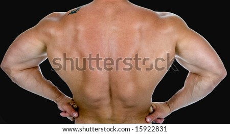 Back view of a body builder,isolated on black - stock photo