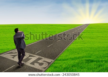 Back view of businessman carrying briefcase and walk forward on the road with number 2015 - stock photo