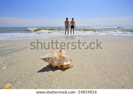 Back view of couple on beach with seashell in foreground.