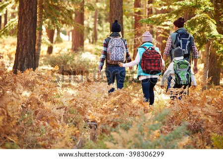Back view of family hiking through forest, California, USA - stock photo
