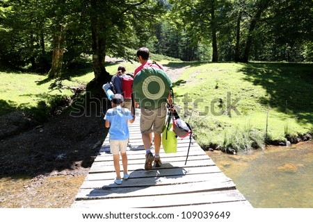 Back view of family walking on a bridge in forest - stock photo