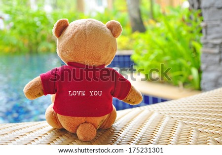 """Back view of teddy bear wearing red T-Shirt with text """"LOVE YOU"""" sitting near swimming pool. Concept about love and relationship. - stock photo"""