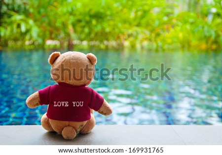 """Back view of Teddy Bear wearing red T-Shirt with text """"LOVE YOU"""". Teddy Bear Sitting near Swimming Pool - stock photo"""