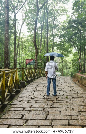 Back view of young Indian man wearing white shirt holding opened blue umbrella, in Kerala South India. Yellow fence road through forest to Vazhachal waterfall. holiday mood/location