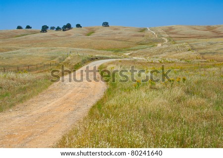 Backcountry Road:  A narrow gravel road winds through the grassy foothills of the Sierra Nevada Mountains in California. - stock photo