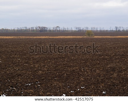 Background a black field and trees against the sky - stock photo