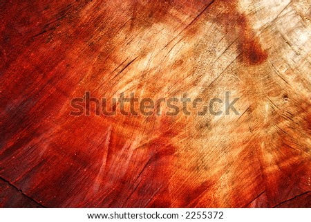 Background:  a close-up of a piece of wood - stock photo