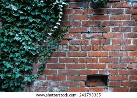 Background brick wall - stock photo