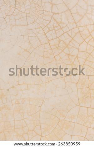 background desert ground - stock photo