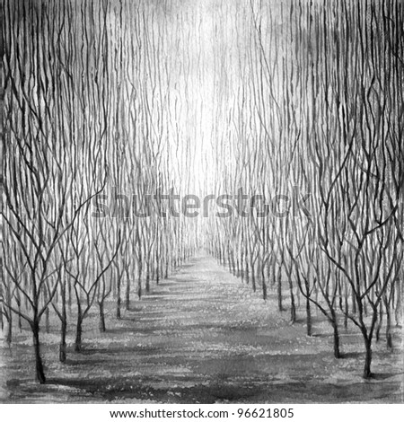 Background. Fantasy. Alley. Very high woods. Square composition. Monochrome watercolor painting. - stock photo