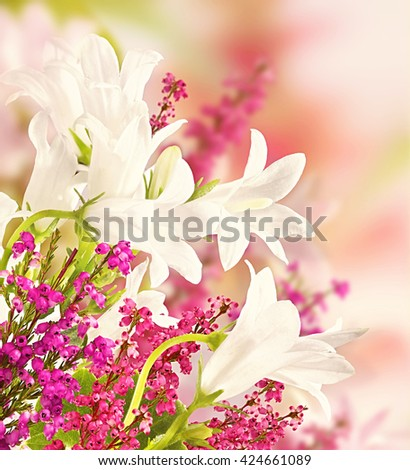 Background for design with flowers, beautiful bouquet of flowers