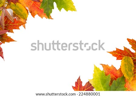 Background frame of isolated colorful autumn leaves top left and bottom right corner perfect for a party or wedding invite or card - stock photo