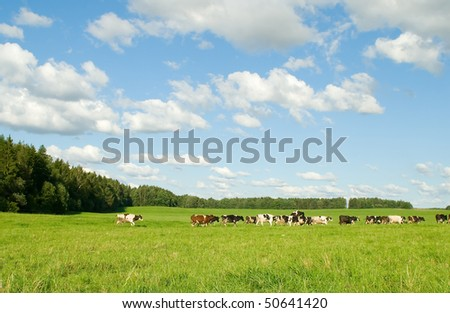 Background from a landscape of field and the sky - stock photo