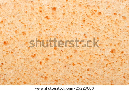 Background from a orange household sponge. Close up.
