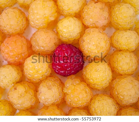 Background from a yellow and red raspberry