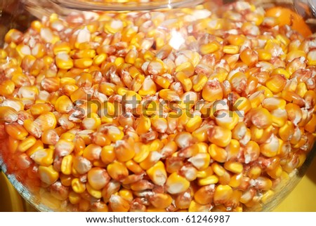 background from corn seeds in a glass