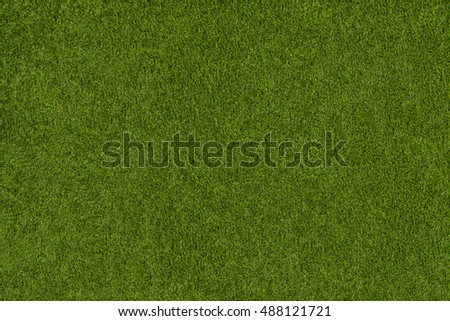 Background from green grass