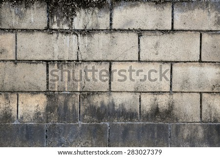 Background from high detailed fragment brick wall