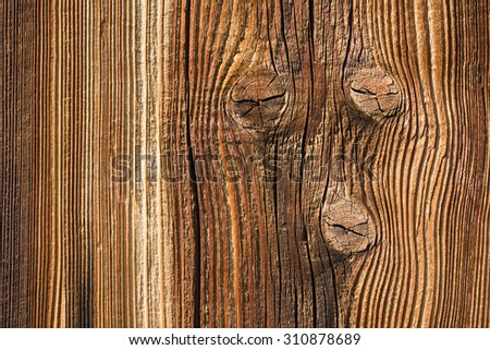 Background from old wooden board