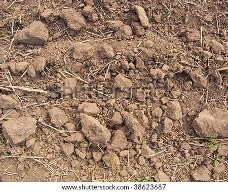 Background from pieces of the brown earth and the rumpled yellow grass - stock photo