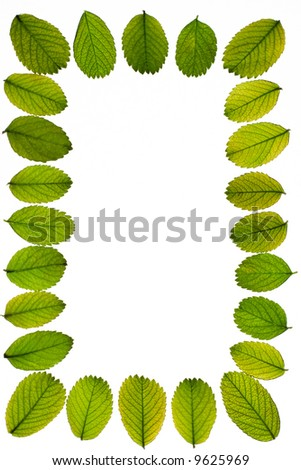 Background from small green-yellow fallen leafs. 7 - stock photo