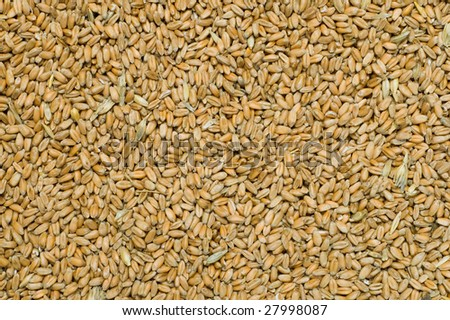 background from whole grains