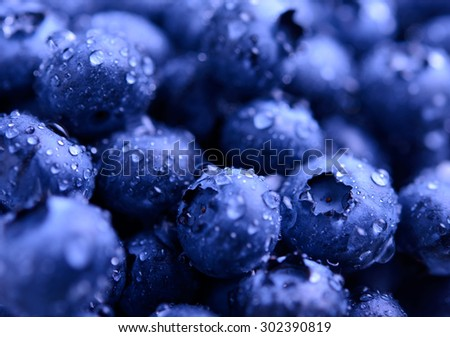 Background Full of Fresh Ripe Sweet Blueberries Covered with Water Drops. Summer Berries, Harvesting Concept - stock photo