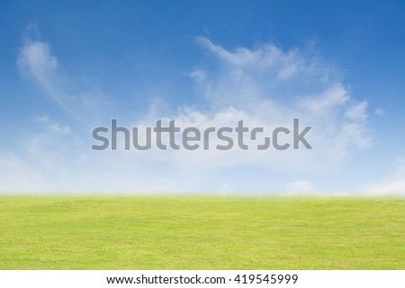 Background grass and sky