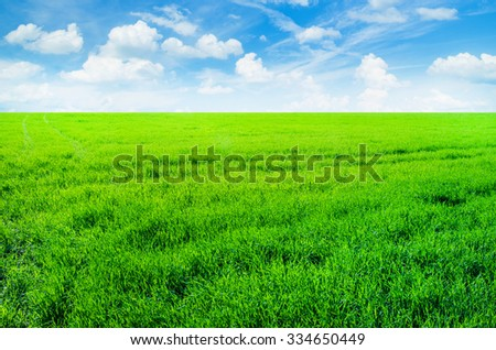 Background image of lush grass field under blue sky - stock photo