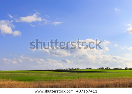 Background image of lush green field under blue sky and white clouds - stock photo
