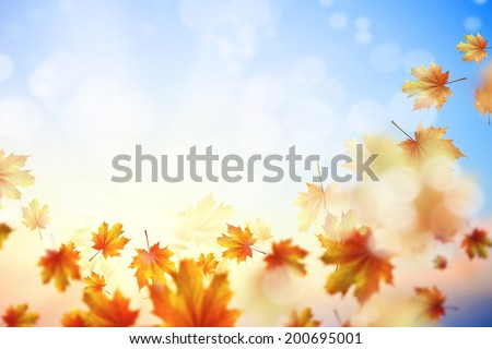 Background image with autumn leaves. Place for text - stock photo