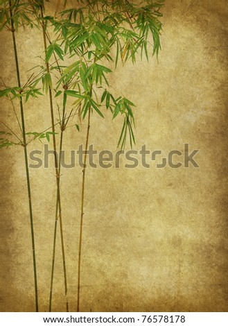 Background in style bamboo with texture of handmade paper