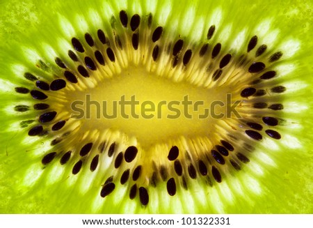 Background kiwi closeup - stock photo