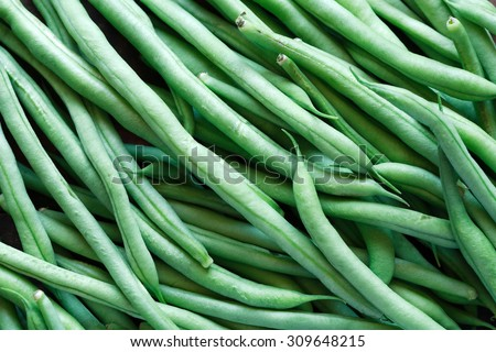 Background made from lot of freshness green beanstalks - stock photo