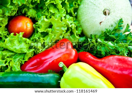 background made of different vegetables - stock photo