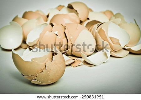 background made of egg shell - stock photo