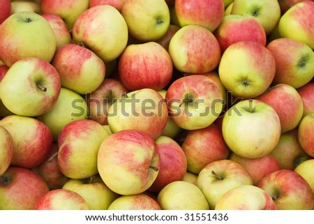 Background made of fresh riped apples - stock photo