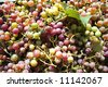 background made of grape berries - stock photo