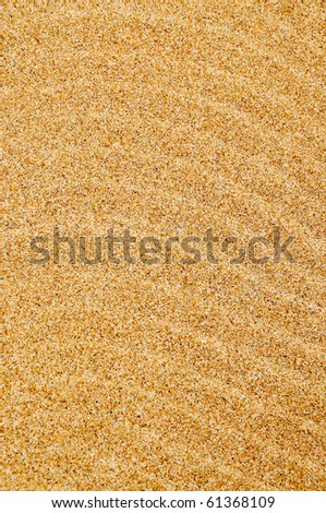background made with a closeup of sand - stock photo