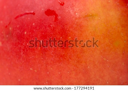 background of a red apple. macro - stock photo