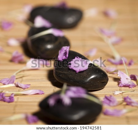 Background of a spa with row of stones and pink leaves on a wooden background. Selective focus. - stock photo
