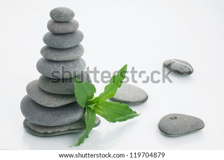 background of a spa with stones, and a sprig of green - stock photo
