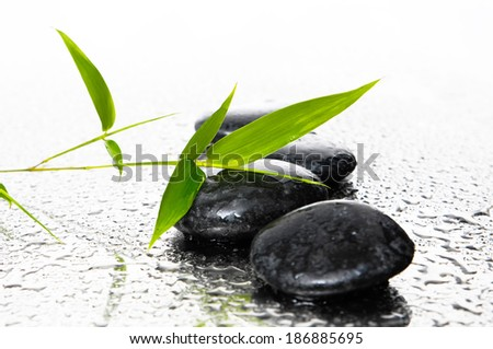 background of a spa with stones, and a sprig of green bamboo - stock photo