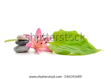 background of a spa with stones and lily flower on white - stock photo